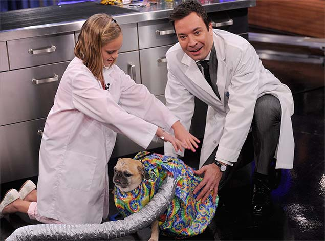 Puff-N-Fluff Dog Dryer on the Tonight Show with Jimmy Fallon