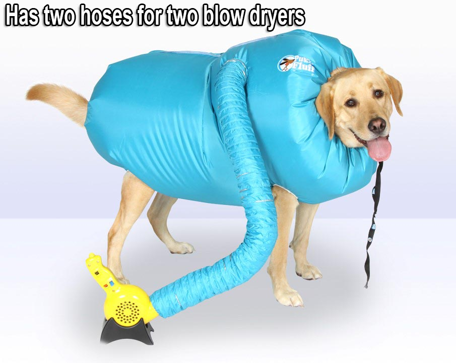 Dog Dryers For Sale